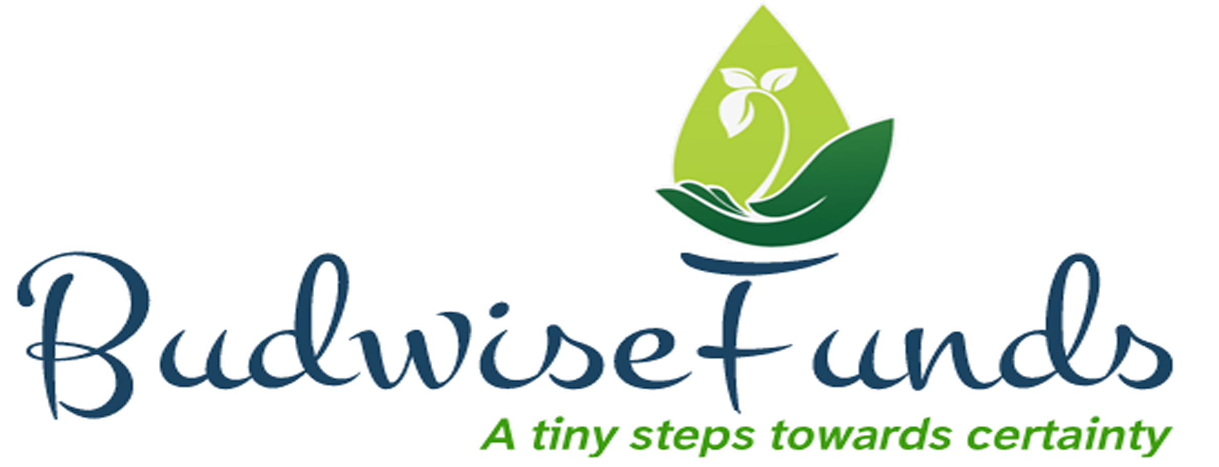 Budwisefunds